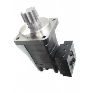 Hydraulique Jumeau Piston Pompe à Pied - BGS 1613