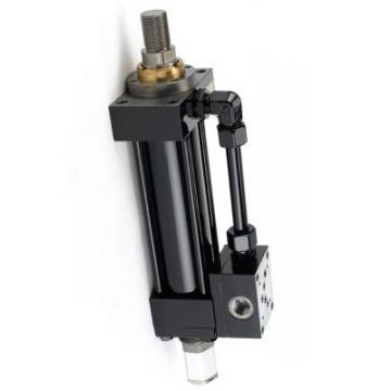 Cric Bouteille Hydraulique 4T Pour réparation Auto Levage Voiture Pneu Vérin
