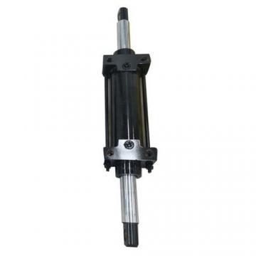 Vérin hydraulique 8 Tonnes pour grue d'atelier