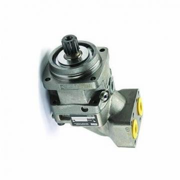 Parker 32-CCPHMITLS14MC-250.0-M-1100 Hydraulic Cylinder USIP
