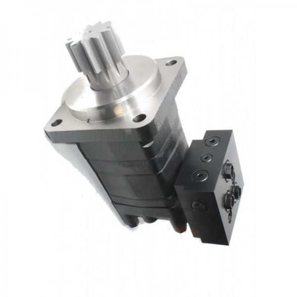 Piston Foreuse Hydraulique pour BGS8389 #2 image